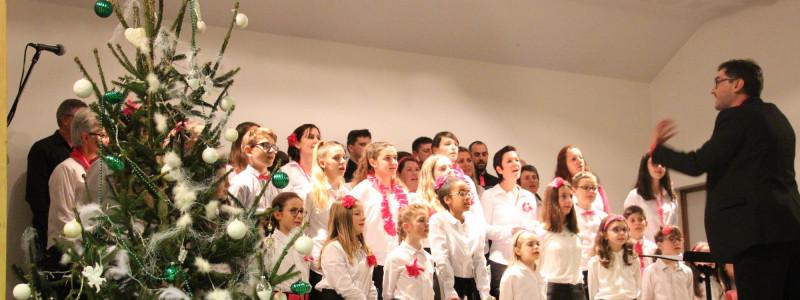 Concert Salle Charles Polliand - DUINGT